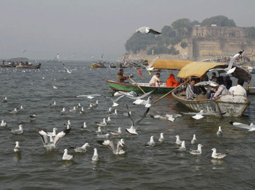Govt gives SC phased plans to clean Ganga