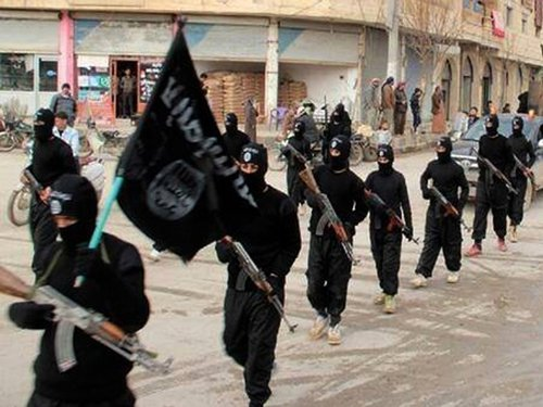 Waving of ISIS flags in Valley 'merits concern': Top army officer