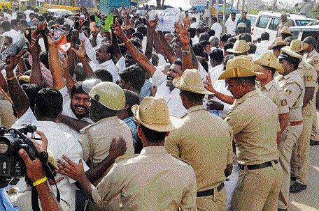 Fans celebrate bail for Jayalalitha