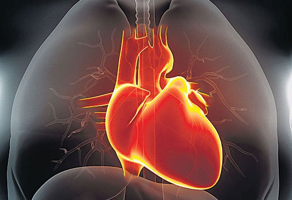 Heart attacks may not be genetic: study