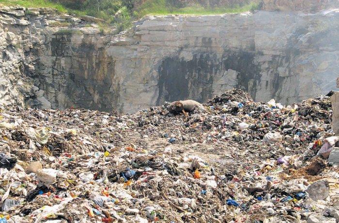 Palike opens 'illegal' dumping yard at Kogilu