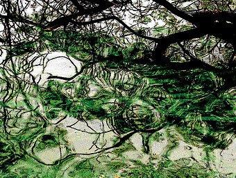Unravelling enigma