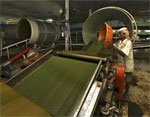 IIP at 3-month high, inflation cools to 5.5%; all eyes on RBI