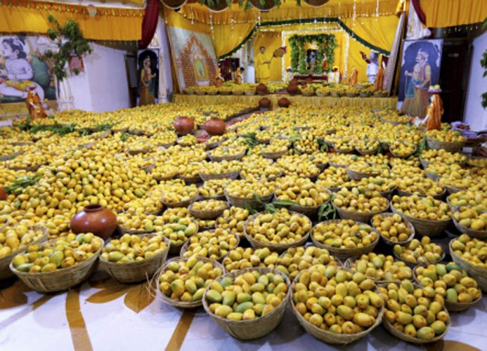 Move to undo ban on export of Alphonso mangoes