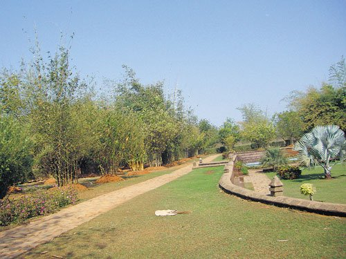 Odisha bamboo garden is a students' delight