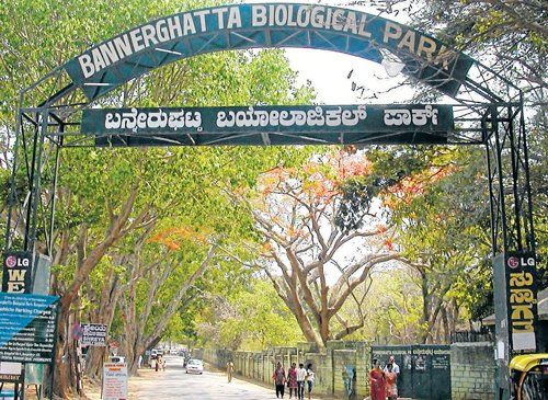 Bannerghatta Park to have CCTVs