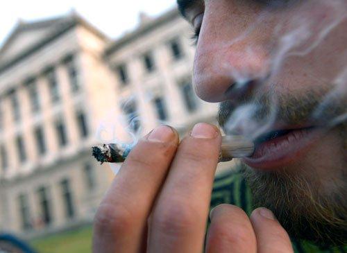 Marijuana abuse affects long-term memory