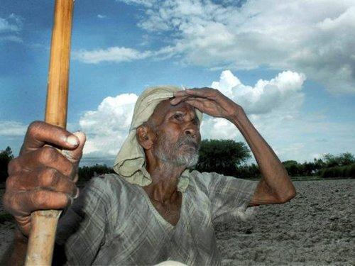 Two more potato farmers kill self in Bengal; toll rises to 5