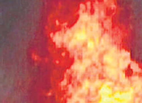 Woman set afire by youth for resisting rape attempt