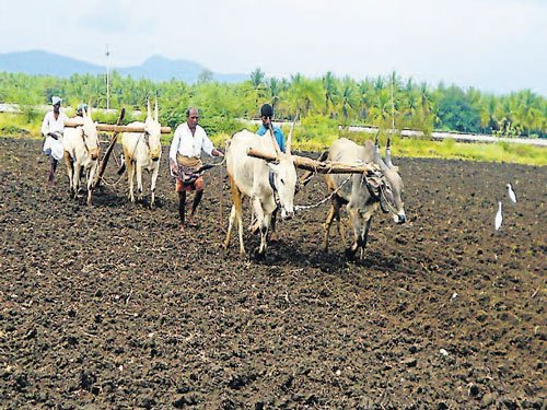 Farmers put rider to instal meters for IP sets