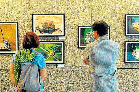 Exhibition seeks to bring India and Korea closer