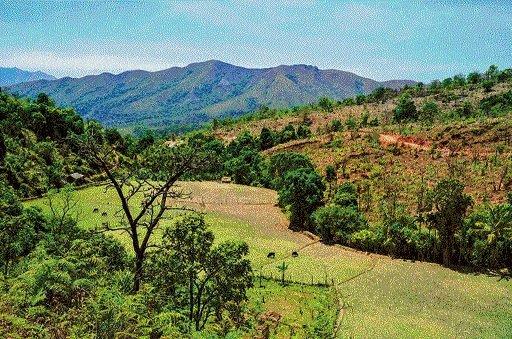 Scrambling up the scenic hills