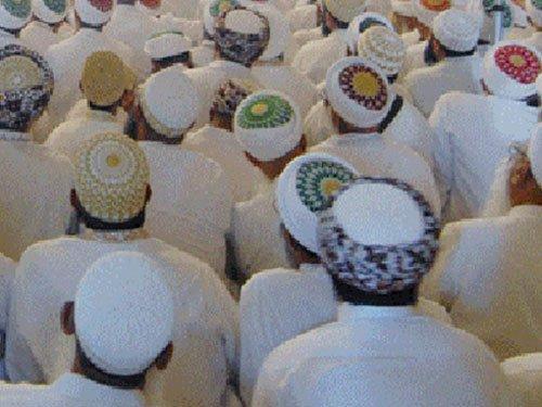 Pak to crackdown on 48 madrassas involved in terrorism