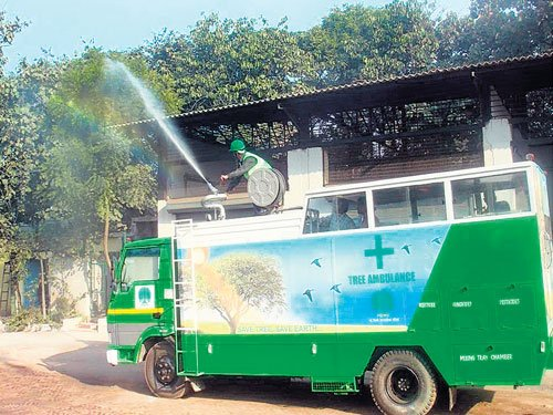 An ambulance to the aid of trees