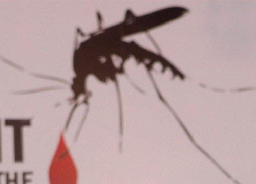 House-to-house survey of dengue
