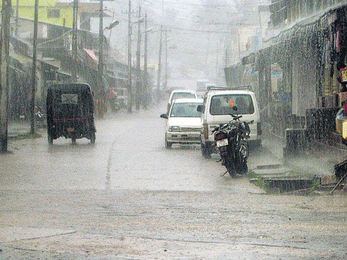 Malnad districts drench in rain