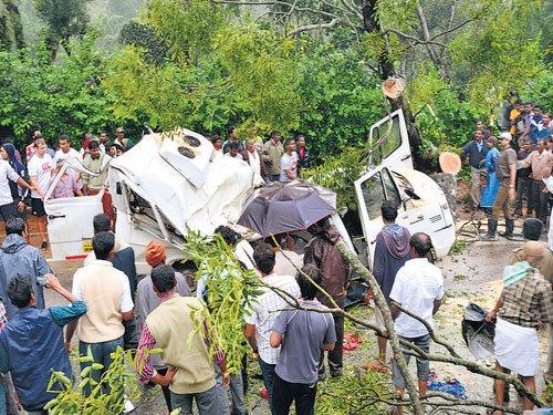 Five pilgrims killed as tree falls on their vehicle