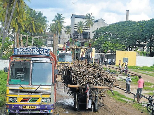 Rs 106.54 cr pending; cane growers in a fix