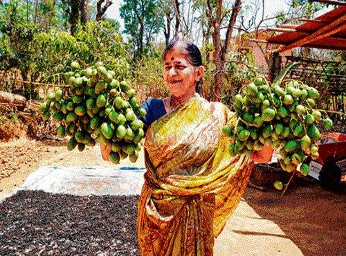 Goodness of native mangoes