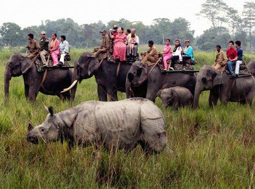 In Kaziranga, villagers get help to end poaching