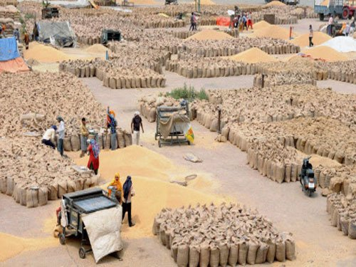 Govt imposes 10% import duty on wheat