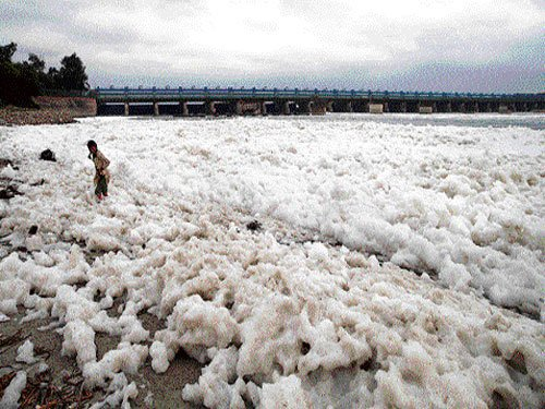 Central, Delhi governments to clean Yamuna