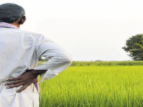 Census shocker: Rural India is a bleak house
