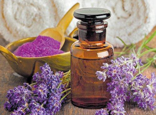 Health benefits of lavender oil