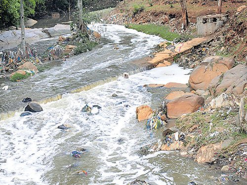More plants needed to treat waste water flowing through Vrushabhavathi: Study