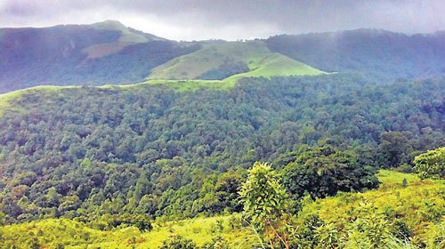 4 states yet to submit  report on Western Ghats
