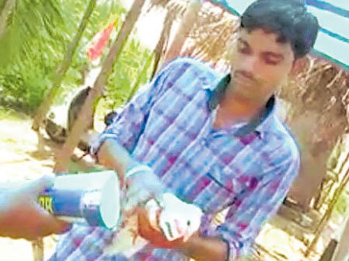 AP Cong cadre tie pigeons with crackers, fire them