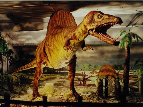 Giant dinosaur had tennis ball-sized brain