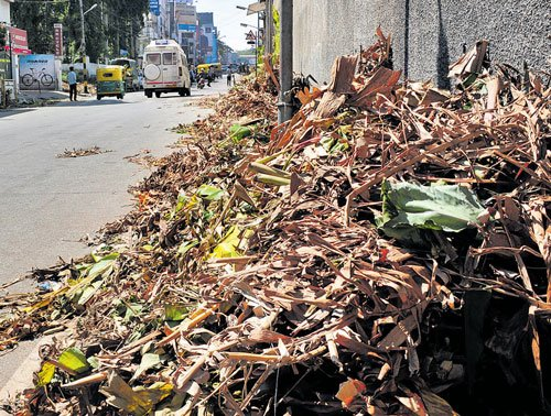 City generates 700 tonnes of excess waste during festival