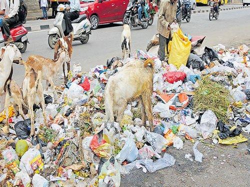 Tackling garbage problem top priority, says George