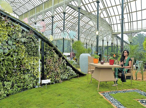 At Lalbagh, let out the gardening enthusiast in you