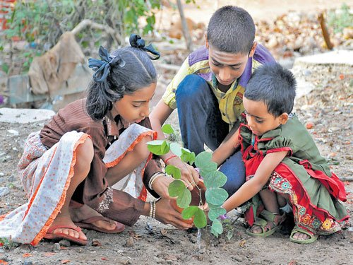 Forest department to create 'green spaces' in government schools