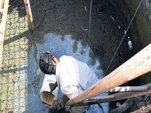 Miscreants pour oil into school well
