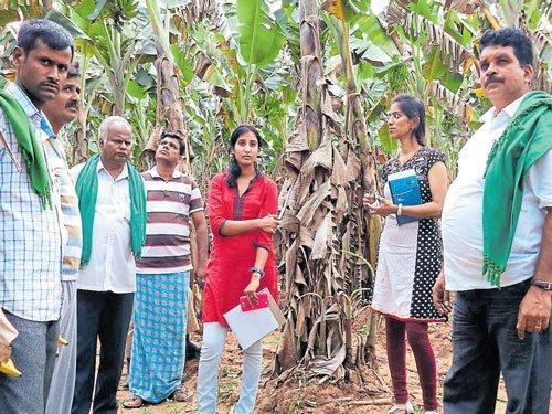 Horticulture department advises farmers on smart agri methods