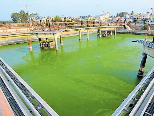 Sewage treatment plants to come up  in four City lakes