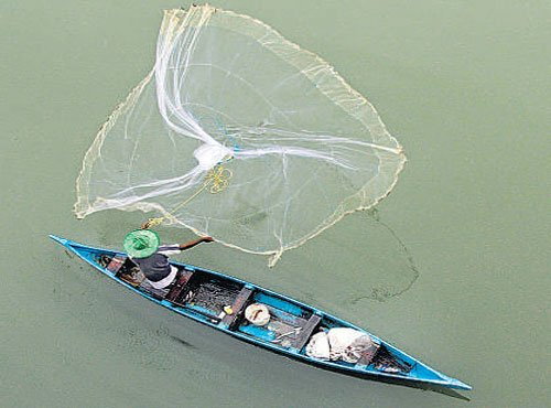 Warming of Arabian Sea poses threat to fisheries: Scientists
