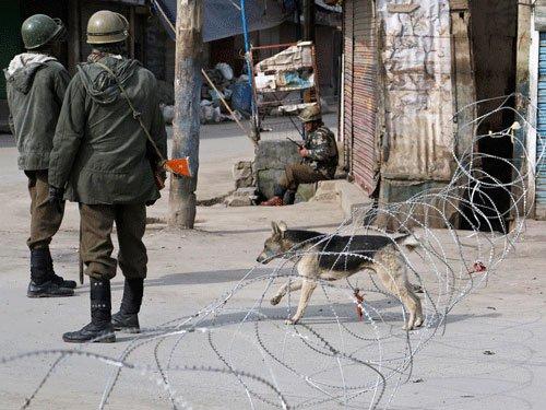 Shutdown against VDCs affects normal life in Kashmir