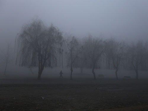 Mercury settles at sub-zero temp in Kashmir; Leh coldest