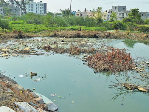 40 per cent of Bengaluru's sewage goes into lakes