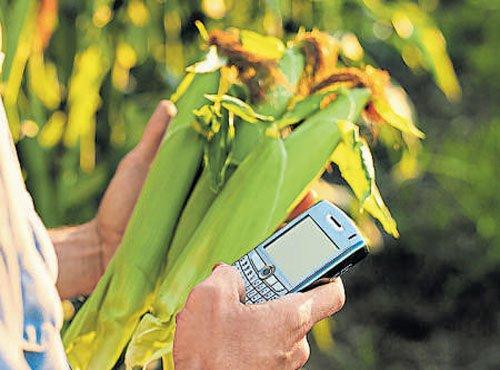 Reducing cost, raising yield Modi govt's priorities in 2016