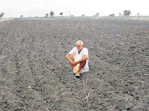 Centre may legalise farm land leasing