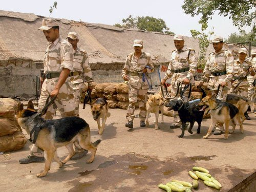 ITBP dog detects hidden IED as part of R-Day security drill