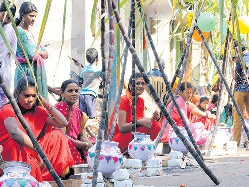 Kite-flying, dahi handi add zest to Sankranti