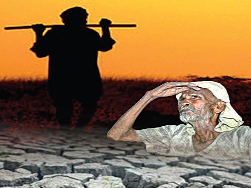 'Agri sector crisis likely to deepen in 2016-17'
