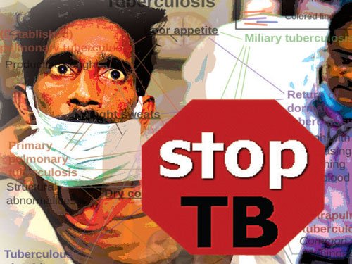 Improve living and working conditions to wipe out TB