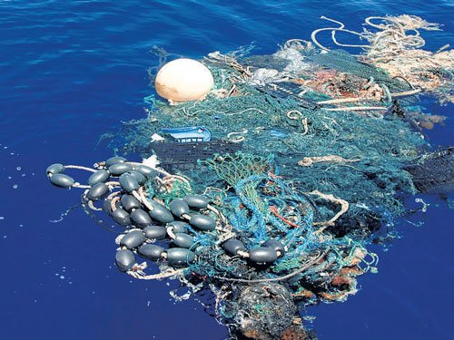 Oceans to have more plastics than fish by 2050: WEF